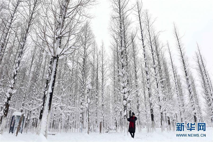 瑞雪兆丰年  雪后美景如画【组图】 - 春华秋实 - 春华秋实 开心快乐每一天